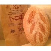 Pane Biologico con Farina di Kamut cotto in forno a legna -500 gr.