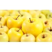 Pomme Golden Delicius