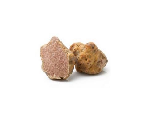 TUBER MAGNATUM, PICO (truffes blanches de Acqualagna)