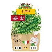 Thym – Plante en pot de 14 cm – Orto mio