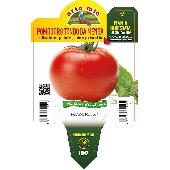 Tomate Ronde – Orto mio