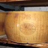 Forme entière Parmigiano Reggiano