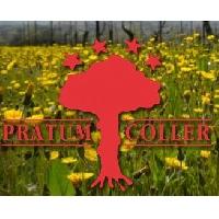 Pratum Coller By Andrea Pirlo