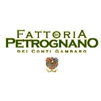 Fattoria di Petrognano