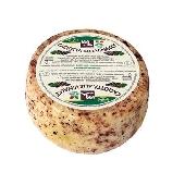 Caciotta, lait m�lang� de bovins et lait de brebis avec p�pins Valmetauro Formaggi tre Valli