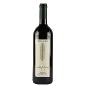 Bruno Rocca - Curr� Barbaresco