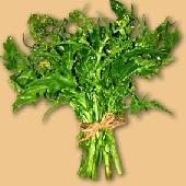 Frijarielli - Brocolis � la napolitaine
