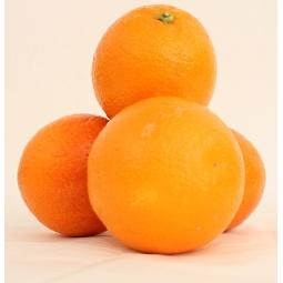 Oranges de Table Ribera Sicile
