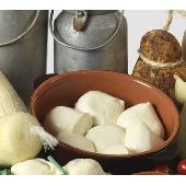 Mozzarella Fior di Latte  des Pouilles de Andria Caseificio Olanda
