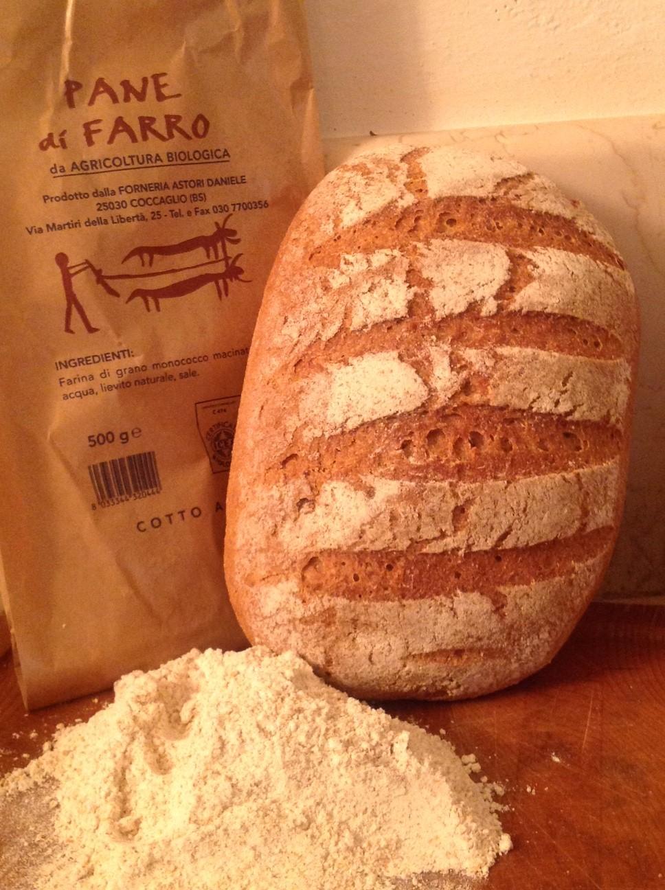 Pain Biologique avec la farine d'�peautre cuit � bois  Forneria Astori