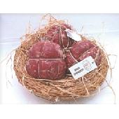 Os de l'Estomac Entreprise Agricole Marchesini