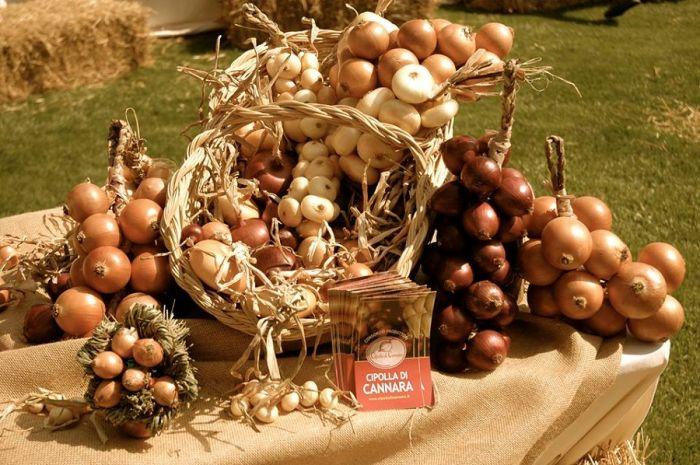 Cipolla(oignon) di Cannara in treccia