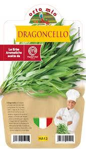 Estragon � Plante en pot 14 cm � Orto mio