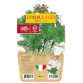 Fenouil sauvage � Plante en pot de 14 cm � Orto mio