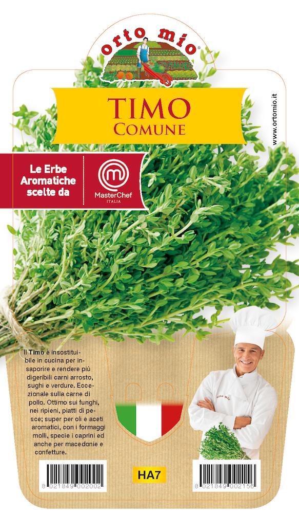 thym plante en pot de 14 cm orto mio cod 8299. Black Bedroom Furniture Sets. Home Design Ideas