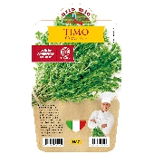 Thym � Plante en pot de 14 cm � Orto mio