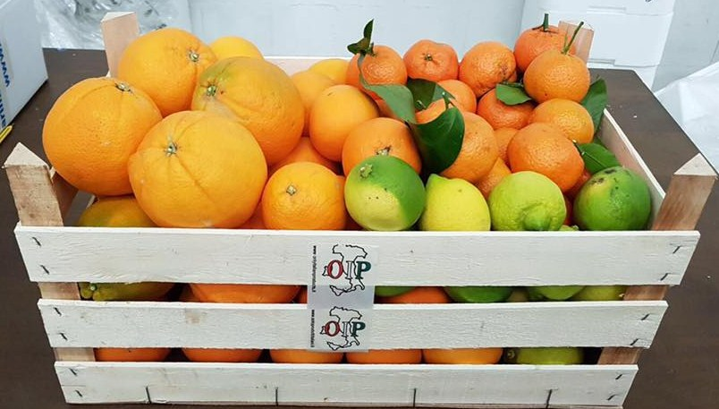 Cassata - dègustation d'agrumes siciliens de Ribera  Ribera  - Azienda Ag. Guarraggi 6 kg. Oranges - jus 6 Kg. Oranges Fioroni Washington 3 kg. Clémentines 2 kg. Citrons naturels