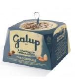 Panettone Tradizionale Gluten Free - Galup